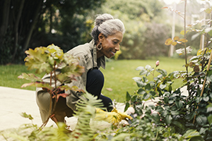 An older woman gardening